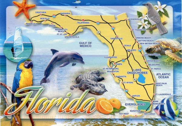 Florida activities for kids other than attraction parks