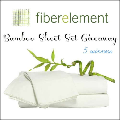 FiberElement Giveaway