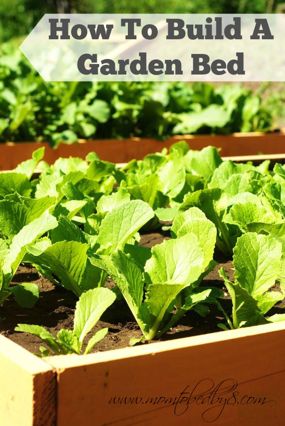 DIY Gardening: How To Build A Garden Bed