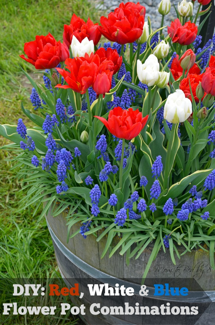 Red, White and Blue Flower Pot