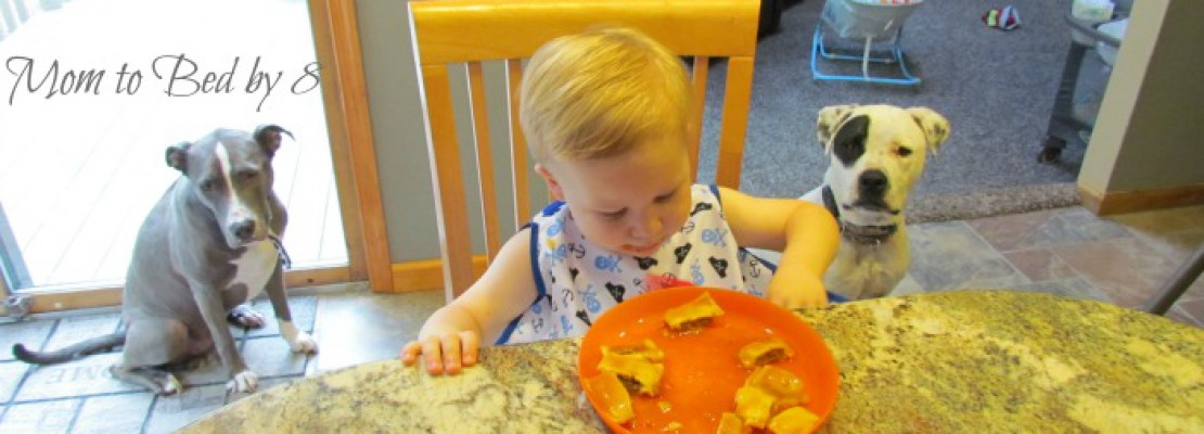 Grubbie Guard by Little Luvie Review & Giveaway