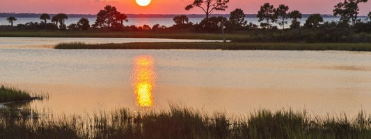 A Family Adventure in Gulf County, Florida
