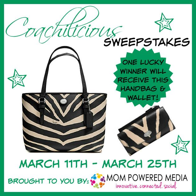 Handbag and Wallet Zebra Coach Giveaway