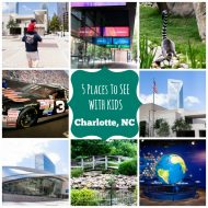 5 Must See Family Friendly Attractions in Charlotte