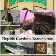 Reptile Gardens is a Must Have Family Experience