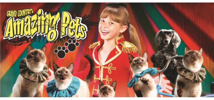 Save $3.00/OFF EACH TICKET Amazing Pets Show at Grand Country Music Hall