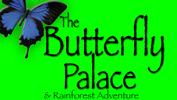 $2 off The Butterfly Palace & Rainforest Adventure admission