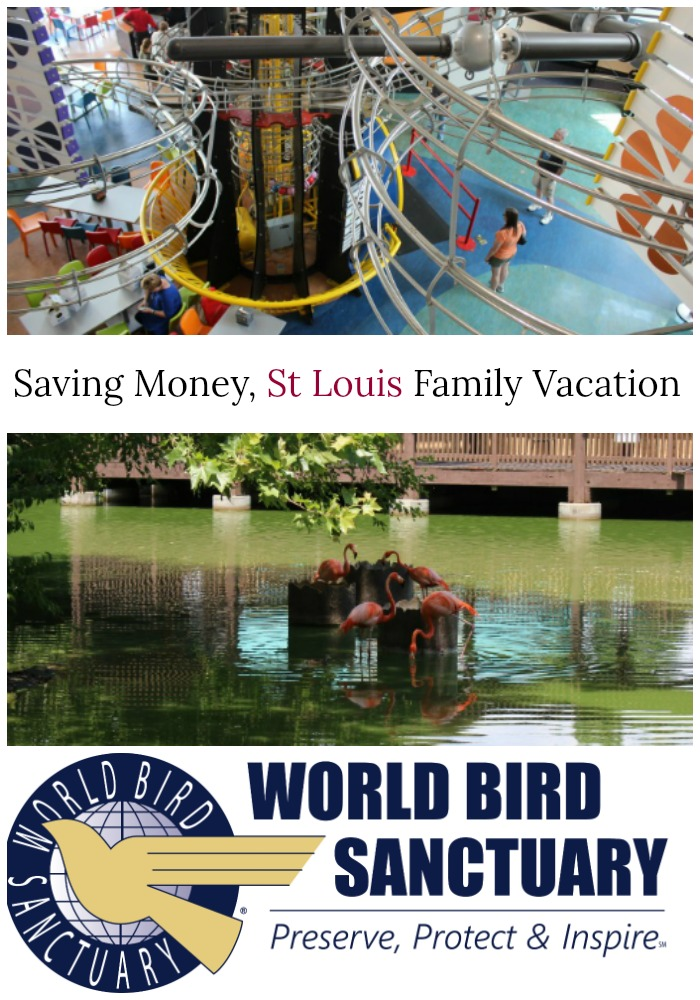 Saving Money on a Family Vacation to St. Louis