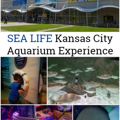 Family Travel: SEA LIFE Kansas City Aquarium Experience