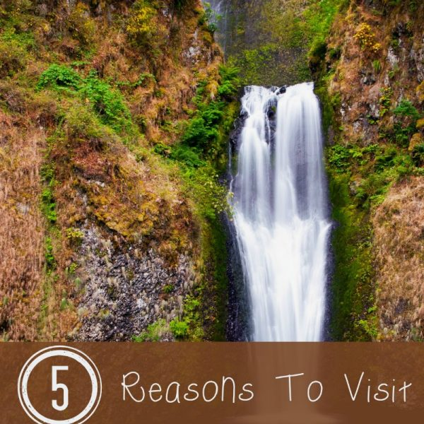 5 Reasons To Visit Portland In The Summer
