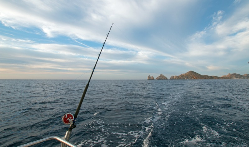 Everything You Need to Know About Day Fishing Trips