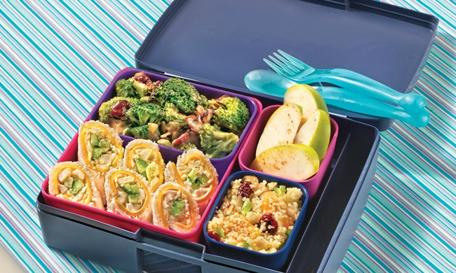 Back-to-School Bento Box Lunch the Kids Will Love