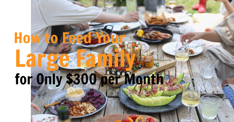 How to Feed Your Large Family for Only $300 per Month + Giveaway