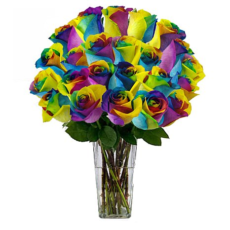 2 Dozen Rainbow Roses