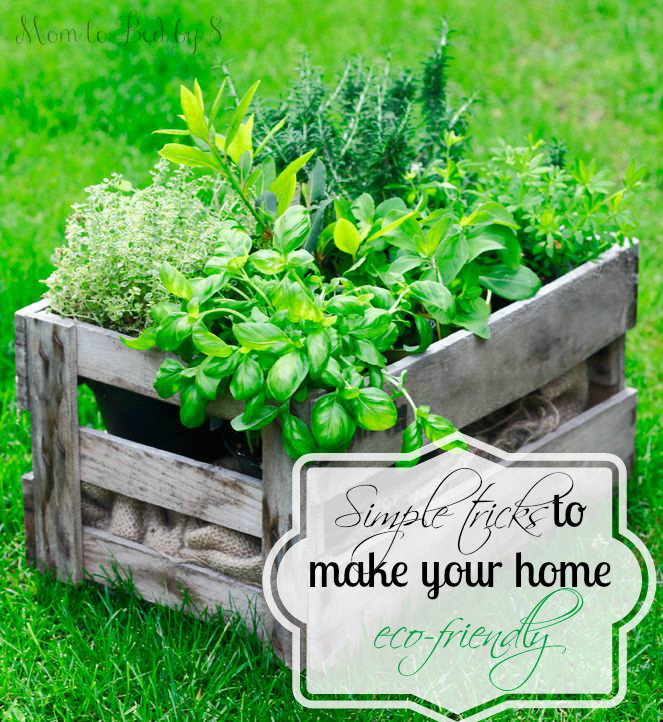 Simple tricks to make your home eco friendly