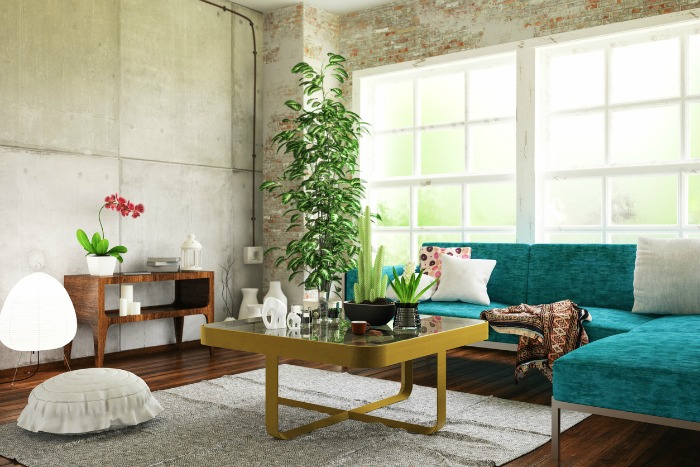 Sustainability Made Simple Tip: Bring air purifying plants into your home