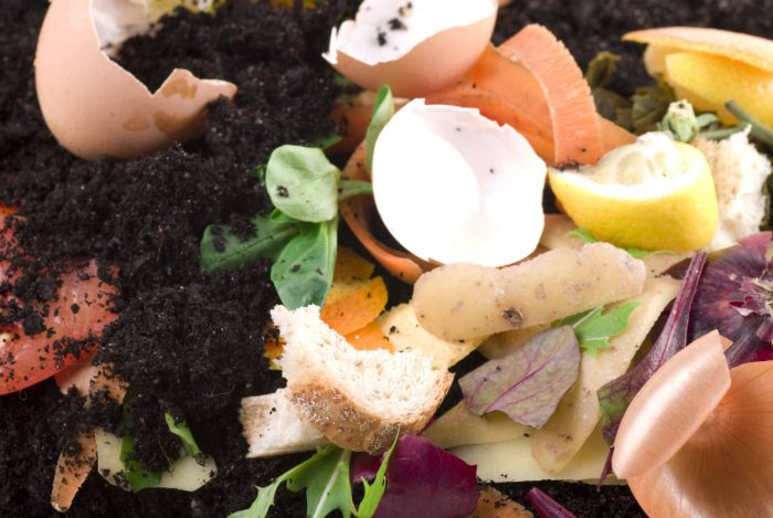 Sustainability Made Simple Tip: Start a compost