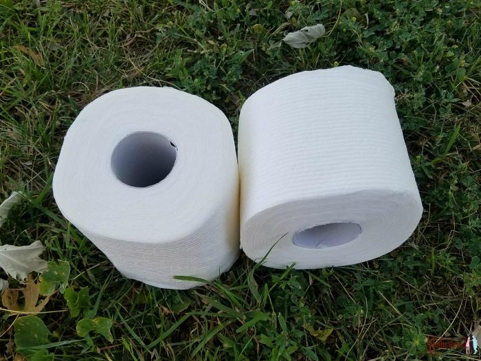 Scott Rapid-Dissolving toilet paper