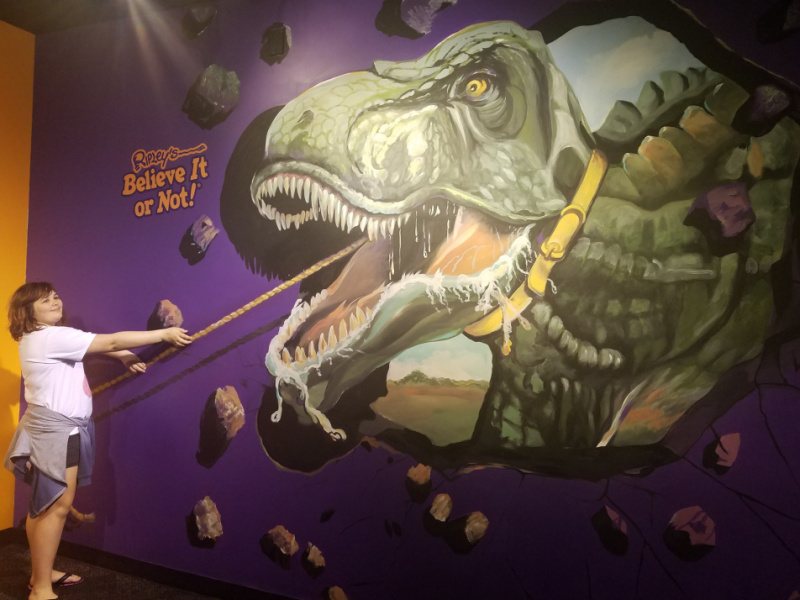 Non Amusement Park Adventures In Orlando - Ripley's Believe It Or Not Odditorium