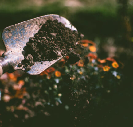 Hate Gardening? Here's How To Handle This Chore