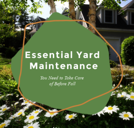 Essential Yard Maintenance You Need to Take Care of Before Fall