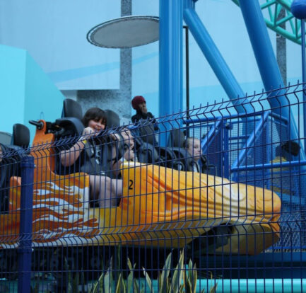 Top 6 Best Theme Parks For Roller Coasters