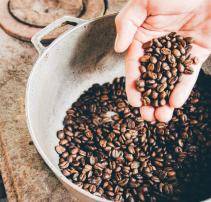 The Journey for Coffee Lovers Plantations You Should See for Yourself